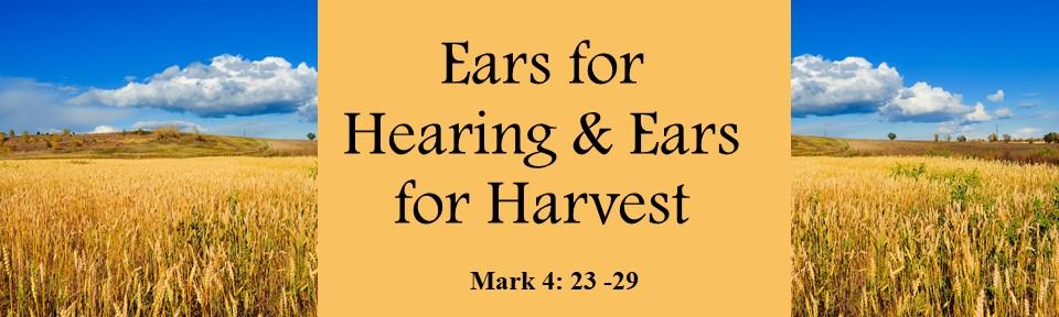 Ears for Hearing & Ears for Harvest